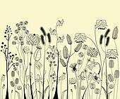 Hand drawing flowers and herbs