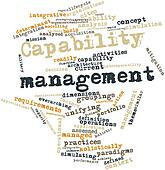 Word cloud for Capability management