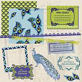 Scrapbook Design Elements - Vintage Peacock Feathers - in vector