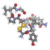 Oxytocin (cuddle hormone) molecule, chemical structure