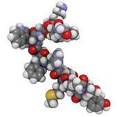 melanotropin (alfa-MSH, melanocyte stimulating hormone), chemica