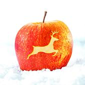 Christmas apple with reindeer