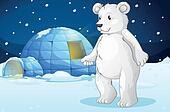 polar bear and igloo