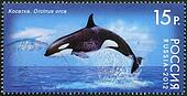 "RUSSIA - CIRCA 2012: A stamp printed in Russia shows Killer Whale, series ""Fauna of Russia. Whales"", circa 2012"