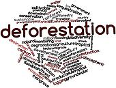 Word cloud for Deforestation