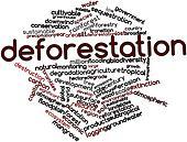 Word cloud for Deforestation