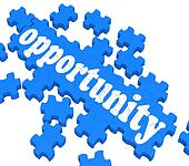 Opportunity Puzzle Shows Career Chances