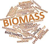 Word cloud for Biomass