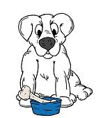 Dog with a bone in a bowl