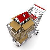 house in an open cardboard box, standing on trolley