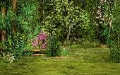 magic forest scene