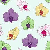 Colorful Orchid Background