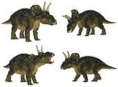 Nedoceratops Pack