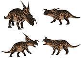 Einiosaurus Pack