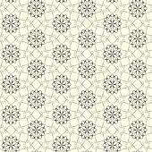 Elegant lace vector pattern