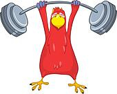 Funny Parrot. Gym