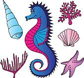 Seahorse shells and plants