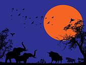 Elephants and bulls at blue sunset