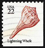 Postage stamp USA 1985 Lightning Whelk, Sea Snail