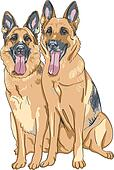 vector color sketch two dog German shepherd breed
