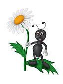 Ants on a daisy