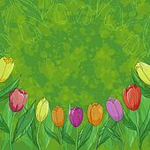 Flowers tulips on green background
