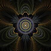 Peacock Feathers Abstract Fractal D