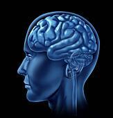 Neurology Symbol of The Brain