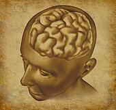 Brain On a Grunge Background