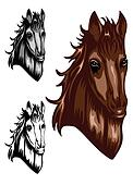 horse color dwa