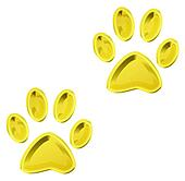 golden animal paws