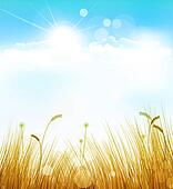 autumn background with grass