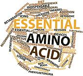Word cloud for Essential amino acid