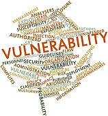 Word cloud for Vulnerability