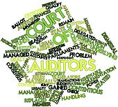 Word cloud for Court of Auditors