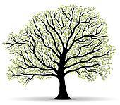 Environmental Protection green tree