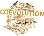Word cloud for Coevolution