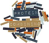 Word cloud for Protein combining