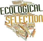 Word cloud for Ecological selection