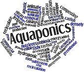 Word cloud for Aquaponics