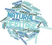 Word cloud for Natural heritage