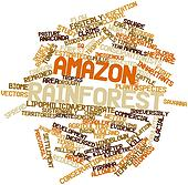 Word cloud for Amazon rainforest