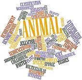 Word cloud for Animal