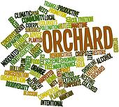 Word cloud for Orchard