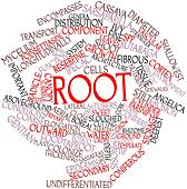 Word cloud for Root