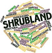 Word cloud for Shrubland