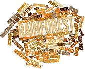 Word cloud for Rainforest