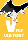 V for the Vulture, an animal alphab