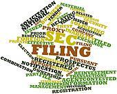 Word cloud for SEC filing