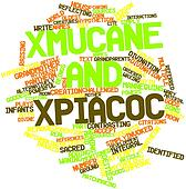 Word cloud for Xmucane and Xpiacoc